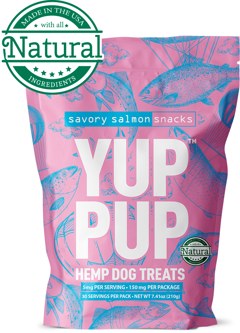 salmon dog treats